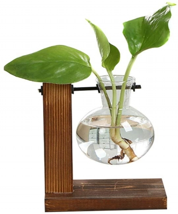 Tjackson-Hydroponic-Plant-Vase-Vintage-Transparent-Wooden-Rack-Decoration-for-Home-Garden-Wedding-B07VRVXV1M