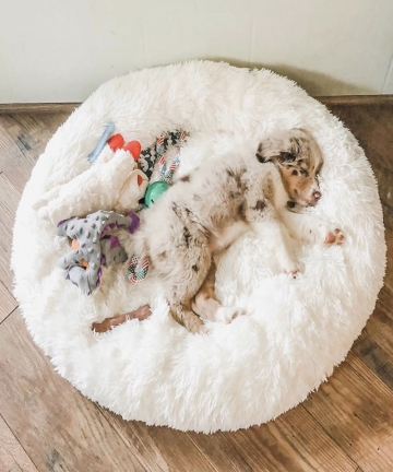Dog-Bed-Long-Plush-Dount-Basket-Calming-Cat-Beds-Hondenmand-Pet-Kennel-House-Soft-Fluffy-Cushion-Sleeping-Bag-Mat-for-Large-Dogs