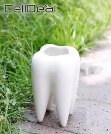 No-Plant-or-Hole-Cute-Tooth-Shape-Solid-and-Durable-Corrosion-resistant-Ceramic-Flower-Pot-Garden-Bonsai-Planting-Length-68CM-40