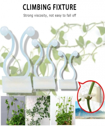 3-Size-Invisible-Wall-Rattan-Clamp-Clip-Plant-Climbing-Wall-Clip-Wall-Vines-Fixture-Wall-Sticky-Hook-Holder-Garden-Supplies-1PC-