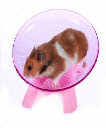 Pet-Hamster-Flying-Saucer-Exercise-Wheel-Hamster-Mouse-Running-Disc-Toy-Cage-Accessories-33037432285