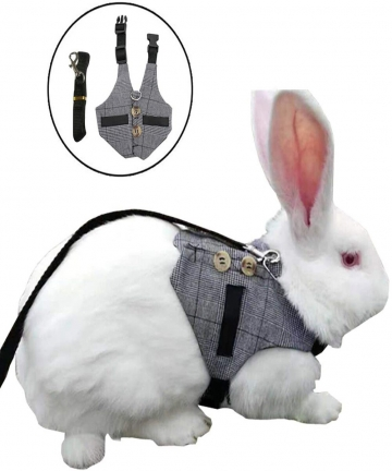 Small-Pet-Rabbit-Harness-Adjustable-Breathable-Rabbit-Chest-Strap-Outdoor-Pet-Vest-with-Pulling-Rope-SML-2020-New-Arrivals-10050